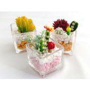 プラクス(造花) サボテン アソート6種 箱/ケース売 30入