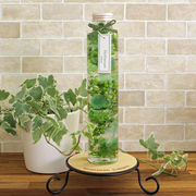 ハーバリウム丸瓶(円柱)グリーン 化粧箱付き