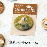 柴犬まるのコレクション缶バッジ: 草原でいやいやさん