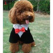 春夏新作 小中型犬服  超人気  超可愛い  ペット服   偽2件  フォーマルスーツ   ペット用品 ネコ雑貨
