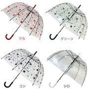 レディースビニール傘 【スター】