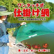 【売り切れごめん】魚仕掛け網 2色アソート