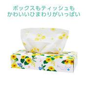 Hana Smile ひまわりBOXティッシュ120W