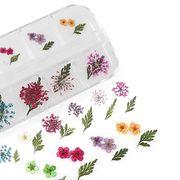 1ケース 押し花 セット 小花&葉 ドライフラワー ジェルネイル UVレジン 封入 デコパーツ