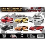 1:24 RC WORLD TOP GRADE CAR