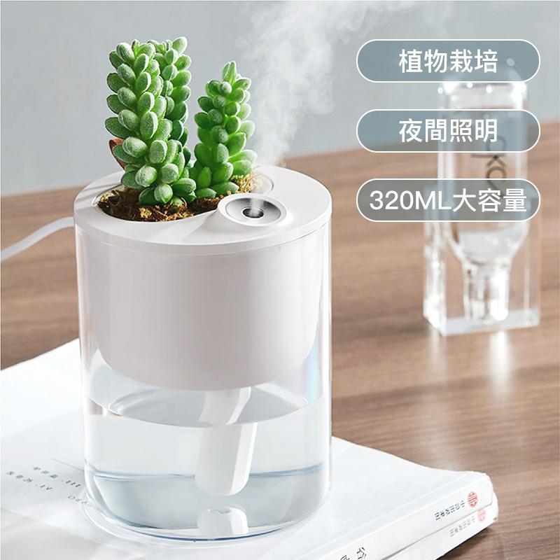 【国内発送】加湿器 植物栽培 ナイトライト 透明タンク ウイルス対策 上から給水 空焚き防止 噴霧量2段調節