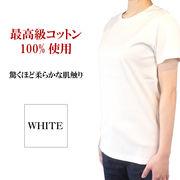スーピマコットン究極のベーシックTシャツ Mサイズ ホワイト