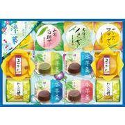 涼菓 RKA-20  手土産 粗品 和菓子 景品 羊羹 ようかん デザート 金澤兼六 ゼリー ギフト