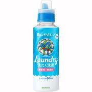 ヤシノミ洗たく用コンパクト 600ML
