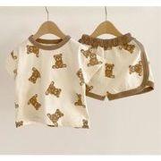 韓国人気新作 ★子供服★ 小さなクマ ベビー服 半袖 トップス+パンツ 2点セット