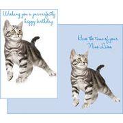 Stockwell Greetings グリーティングカード バースデー 猫