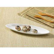 【強化】 楕円皿(10号笹の葉紋)   パスタ皿/白食器