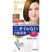 サロンドプロ無香料ヘアカラー早染めクリーム(白髪用) 2 より明るいライトブ 【 ヘアカラー・白髪用 】