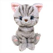【ギフトにオススメ】Kitten ぬいぐるみS/アメリカンショートヘア/グレー ネコ