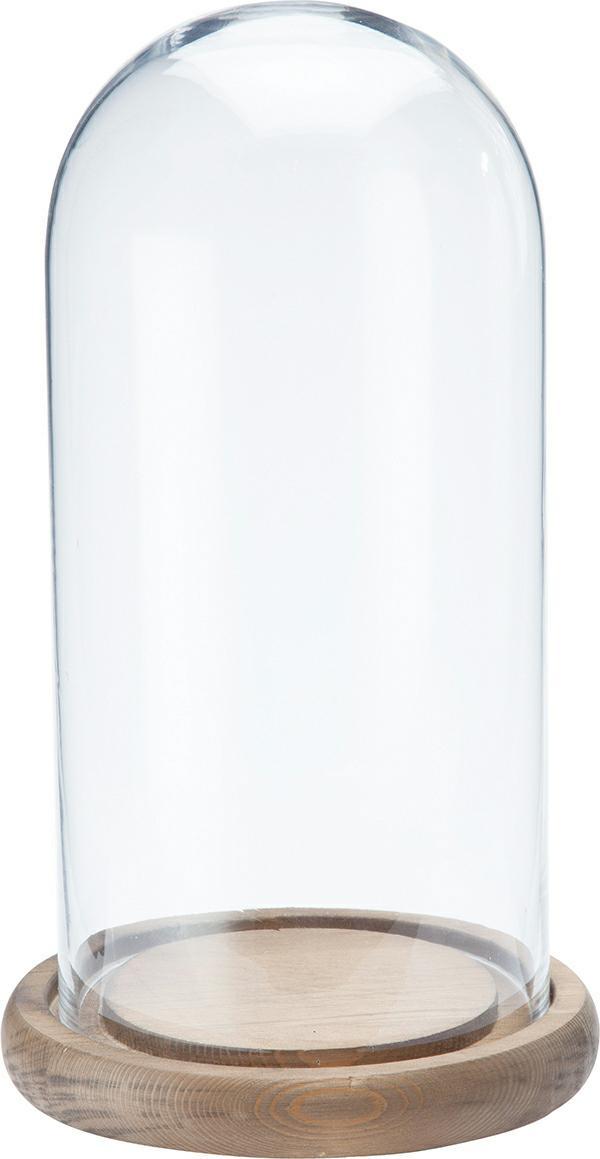 ウッドガラスドーム S ガラス製品 限定販売商品