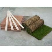 ちょこっと芝生 100 【天然芝100%・自然素材・簡単設置・お手入れ簡単・ペットの遊び場にも】キット付