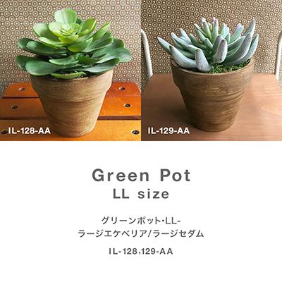 枯れない植物で作る手軽な癒し空間【グリーンポット・LL-ラージエケベリア/ラージセダム】
