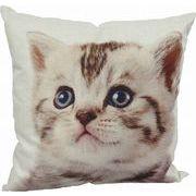 【お仕入れ12000円で送料無料♪♪】【クッション CAT】アメショ