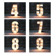 SIGN WITH LIGHT 「4~9」