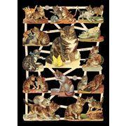 Ernst Freihoff スクラップシート <猫> *クロモス