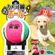 ペットのかわいい写真を撮りたい!!★☆これで目線をいただき♪☆★スマホに簡単装着!カメラ目線ボール