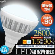 <LED電球・蛍光灯>30W撮影照明用LEDランプ 散光型