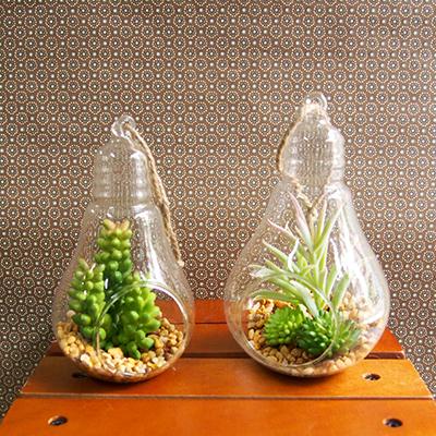 お部屋をグッと華やかに枯れない植物で作る手軽な癒し空間【イミテーションテラリウム・ランプ・S/L】