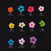 20枚 選べる11色 ドライフラワー ネイル ジェルネイル UVレジン練習用 封入 小さい押し花 デコパーツ