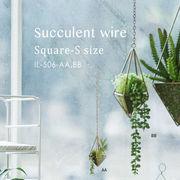枯れない植物で作る手軽な癒し空間【サキュレントワイヤー・スクエア・S】2種展開