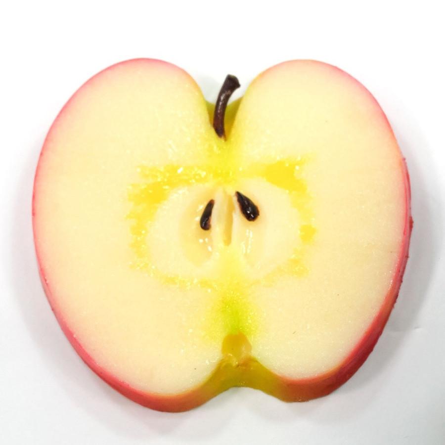 フード コースター FOOD COASTER Mサイズ【リンゴ】