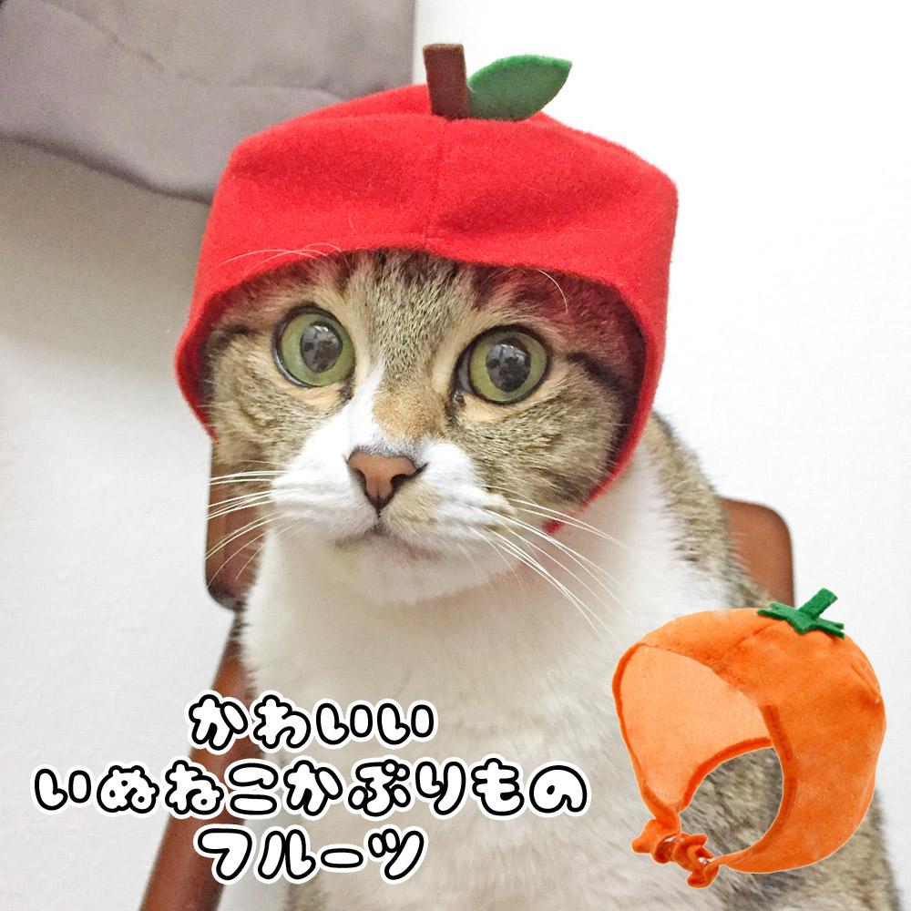 犬猫 かわいいフルーツ かぶりもの