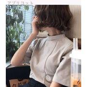 春夏 新しいデザイン セミハイ襟 ブラッシュ 半袖Tシャツ 女 単一色 何でも似合う ベ