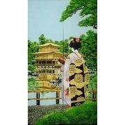 のれん 150cm丈 「舞妓金閣寺(レース)」【日本製】和風 コスモ 目隠し