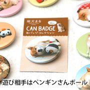 柴犬まるのコレクション缶バッジ: 遊び相手はペンギンさんボール