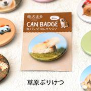 柴犬まるのコレクション缶バッジ: 草原ぷりけつ