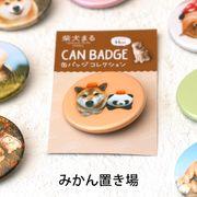 柴犬まるのコレクション缶バッジ: みかん置き場