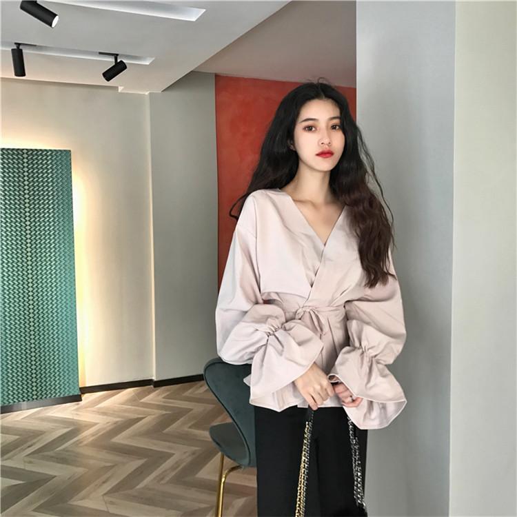 推薦デーリー・ウェア 気質 韓国ファッション  スタイル  ワイルド  Vネック  ホーンスリーブ  トップス