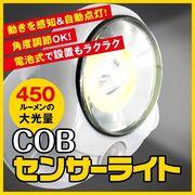 COB LEDセンサーライト