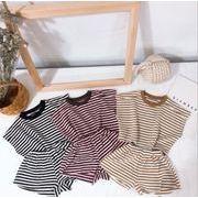 子供服 夏 セットアップ Tシャツ+パンツ 男の子  女の子 2点セット ボーダー カジュアル系 3色