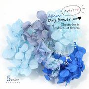 【ドライフラワー】レジンやハーバリウムに♪5色 あじさい花材セット《ブルー系》【当店オリジナル】