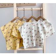 Tシャツ 半ズボン 上下セット 子ども キッズ 夏 新作 可愛い チェーリ シンプル 人気