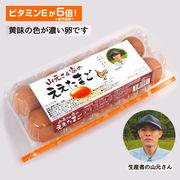 ●☆山元さん家のええたまご 10個×12パック 卵 玉子 たまご タマゴ 41000