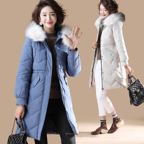 2020新作 レディースファッション コート SW38541L