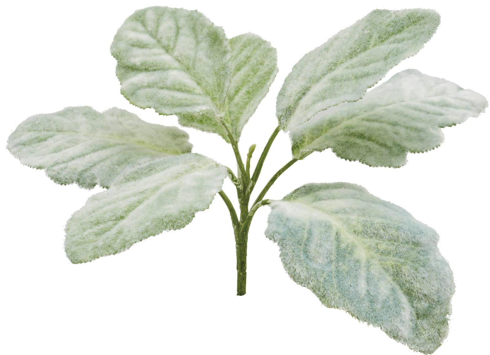 【造花】【インテリアグリーン】ベゴニアマクラータブッシュ