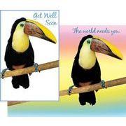 Stockwell Greetings グリーティングカード お見舞い 鳥