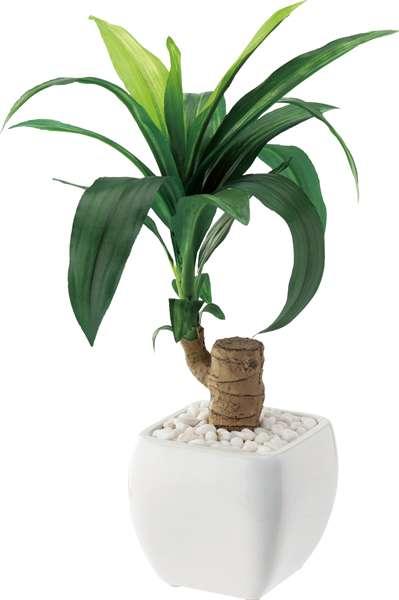 ドラセナポット 造花 グリーンインテリア  スプリング&サマーアイテム