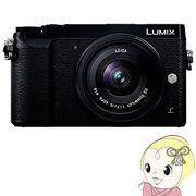 パナソニック ミラーレス一眼カメラ LUMIX DMC-GX7MK2L-K 単焦点ライカDGレンズキット [ブラック]