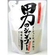 男のシャンプー 詰替用 250ml 【 ちのしお社 】 【 シャンプー 】