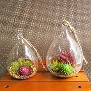 お部屋をグッと華やかに枯れない植物で作る手軽な癒し空間【イミテーションテラリウム・ドロップ・S/L】
