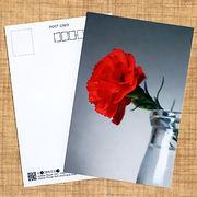 花のポストカード カーネーション(赤)